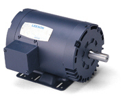 LEESON 200 - 208 - 400 Volt Three Phase Motors