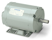 LEESON Aeration Fan Three Phase Motors