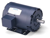 LEESON Compressor Duty Motors