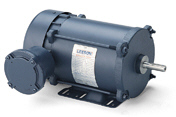 LEESON Explosion-Proof Motors 1-Phase