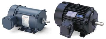Leeson three phase explosion proof motors automatedpt for Leeson explosion proof motor