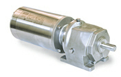 LEESON Grove Gear IRONMAN Stainless Steel Helical-Inline R Series