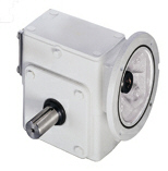 LEESON Grove Gear IRONMAN WASHGUARD GR Series Gear Reducers