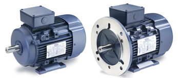 LEESON IEC (Metric) Motors