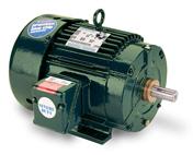 LEESON IEEE 841 TEFC Cast Iron Motors