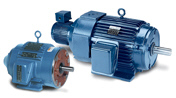 LEESON Inverter Rated Motors