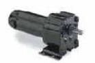 LEESON P300 Series DC Gearmotors