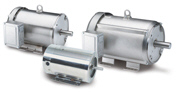 LEESON Three Phase Premium Stainless Motors