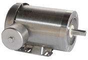 LEESON Three Phase Stainless Steel Motors
