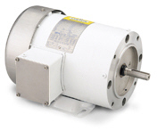 LEESON Washguard White Epoxy Motors